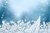 Winter Activities 1